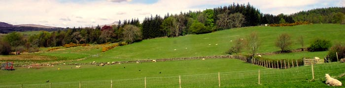 Gartmore bed and breakfast has great views of The Trossachs